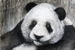 Panda för kolteckning Royaltyfri Bild