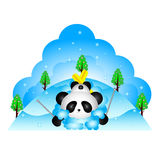 Panda fell while skiing Stock Images