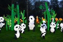 Panda field Stock Images