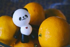 Panda figurine on a background of oranges Stock Images