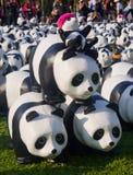 Panda flashmob bij Lumpini-park Royalty-vrije Stock Foto's