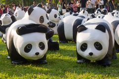 Panda flashmob bij Lumpini-park Royalty-vrije Stock Foto