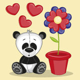 Panda with flower Stock Image