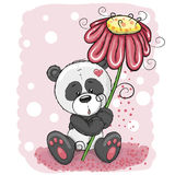 Panda with flower. Greeting card Panda with flower on a pink background royalty free illustration