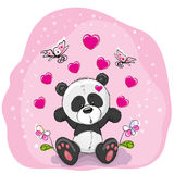 Panda with flowers Stock Photography