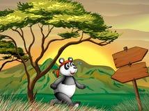 A panda following the wooden arrowboard Stock Photography