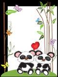 Panda,frame Stock Image