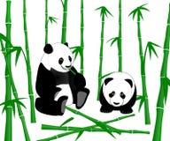 Panda géant chinois mangeant des pousses de bambou Images stock