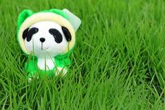 Panda Garden stockbilder