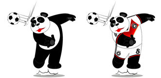 Panda Geraman Fotografia de Stock Royalty Free
