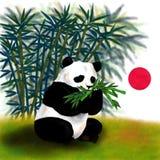 Panda gigante che si siede e che mangia bambù lo spirito dell'Asia, Fotografia Stock Libera da Diritti