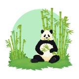 Panda gigante que senta-se e que come com a floresta de bambu no fundo Urso preto e branco que guarda e que mastiga o bambu ilustração stock