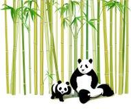 Panda gigante y cachorro Fotos de archivo