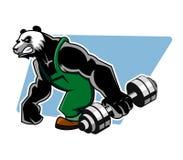 Panda Grab Dumbbell Royalty Free Stock Image