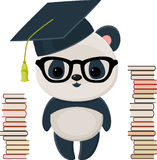 Panda graduada con los libros Imágenes de archivo libres de regalías