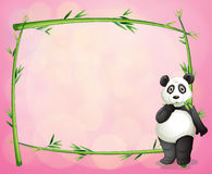 A panda and the green bamboo frame Stock Image