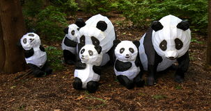 Panda group Royalty Free Stock Photography