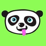 Panda Head Stock Images