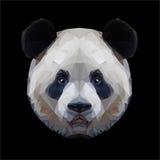 Panda head polygon portrait. Isolated Stock Image