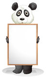 A panda holding an empty board Stock Images