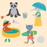 Panda, Hond, Kat en Olifant op het strand Stock Foto's