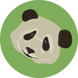 Panda icon Stock Photography