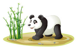 A panda Royalty Free Stock Image