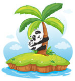 Panda island Stock Photography