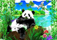 Panda Island Royalty Free Stock Images
