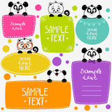 Panda and kittens Royalty Free Stock Image