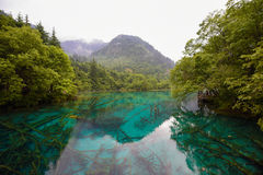 Panda lake of Jiuzhai Valley National Park. Panda lake has blue color water and surrounded by green forest Stock Photography