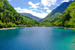 Panda lake at Jiuzhaigou, Sichuan, China Stock Image
