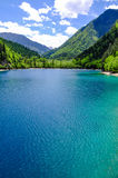 Panda lake at Jiuzhaigou, Sichuan, China Stock Images