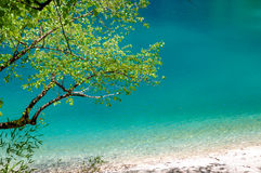 Panda lake at Jiuzhaigou, Sichuan, China Stock Photography