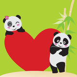Panda-Liebe Stockfotos