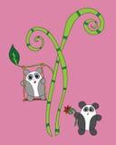Panda linda dos en el árbol de bambú Fotografía de archivo