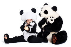 Panda love. Child wearing a panda costume holding a little baby panda Stock Image