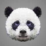 Panda low poly portrait Royalty Free Stock Image