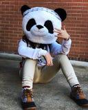 Panda Mask imagem de stock royalty free
