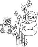 Panda met bamboe royalty-vrije illustratie