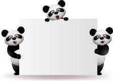 Panda met leeg teken Royalty-vrije Stock Afbeeldingen