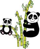 Panda mit Bambus lizenzfreie abbildung