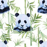 Panda, modèle sans couture en bambou D'isolement Aquarelle tropicale Photo stock