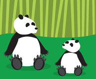Panda Mom and Cub Stock Photo