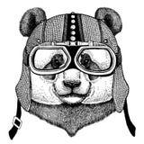 Panda, motociclo d'uso dell'orso di bambù, casco aereo Illustrazione del motociclista per la maglietta, manifesti, stampe illustrazione vettoriale