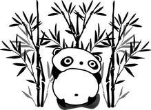 Panda na floresta de bambu fotografia de stock royalty free