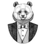 Panda niedźwiedź, bambusa modnisia niedźwiadkowa zwierzęca ręka rysujący wizerunek dla tatuażu, emblemat, odznaka, logo, łata Obrazy Stock