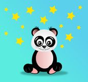 Panda in night Royalty Free Stock Photo