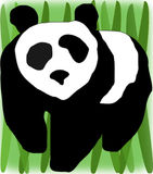 Panda no campo Fotografia de Stock