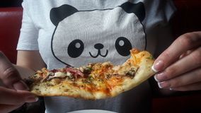 Panda no t-shirt e na pizza fotos de stock royalty free